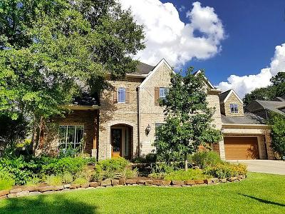 The Woodlands Single Family Home For Sale: 67 Nocturne Woods Place