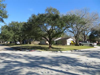 Friendswood Single Family Home For Sale: 209 Dawn Avenue