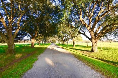 Fort Bend County Country Home/Acreage For Sale: 1006 Fm 359 Road