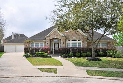 Sugar Land Single Family Home For Sale: 1607 Gannoway Lake Court