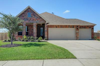 League City Single Family Home For Sale: 6216 Western Pine Drive