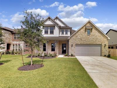 Lakes Of Savannah Single Family Home For Sale: 4902 Gingerwood Trace Lane