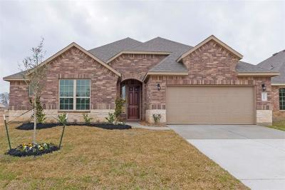 Conroe Single Family Home For Sale: 14113 Emory Peak Court