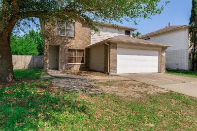 Katy Single Family Home For Sale: 2518 Raintree Village Drive