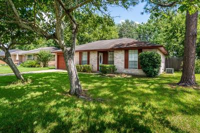 Friendswood Single Family Home For Sale: 209 Brigadoon Lane