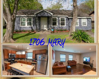 Bay City Single Family Home For Sale: 1706 Mary St