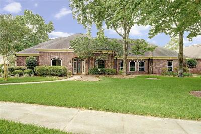 Houston Single Family Home For Sale: 24 Champion Villa Drive