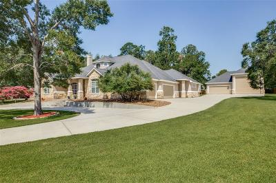 Willis Single Family Home For Sale: 12195 N Lake Vista Drive N