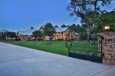 Magnolia Single Family Home For Sale: 36942 Stallion Run