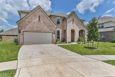 Tomball Single Family Home For Sale: 22906 Laburname Court