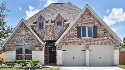Pearland Single Family Home For Sale: 2995 Woodson Terrace Lane