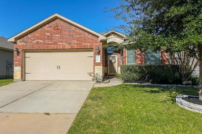 Tomball Single Family Home For Sale: 8706 Sunrise Canter Drive
