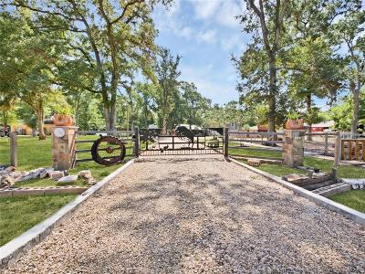 Fort Bend County Single Family Home For Sale: 604 Wrangler Road