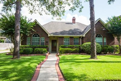 Sugar Land Single Family Home For Sale: 1407 N Gabriel River Circle