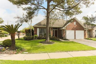 Houston Single Family Home For Sale: 7434 Pacific Ridge Court