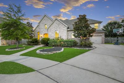 Houston Single Family Home For Sale: 8902 Lilac Springs