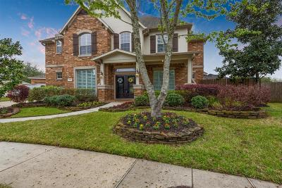 Houston Single Family Home For Sale: 14002 Copperwillow Court