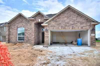 Pearland Single Family Home For Sale: 3612 Gracie Circle