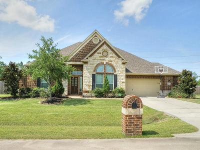 Friendswood Single Family Home For Sale: 2402 Nilelake Court