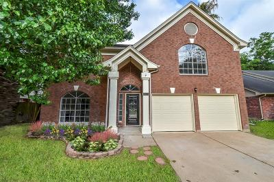 Houston Single Family Home For Sale: 5315 Pine Cliff Drive