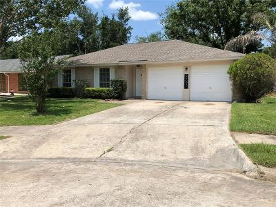 Webster Single Family Home For Sale: 17807 Heritage Colony Court