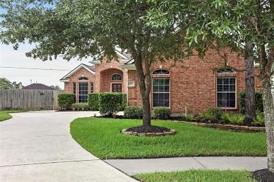 Montgomery County Single Family Home For Sale: 29703 S Legends Village Court