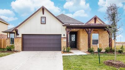 Fort Bend County Single Family Home For Sale: 8706 Gladiolus