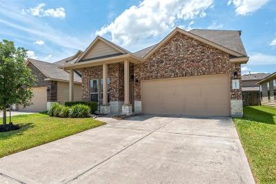 Katy Single Family Home For Sale: 20435 Thunder Ridge Lane