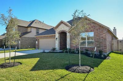 Katy Single Family Home For Sale: 28719 Forest Pass
