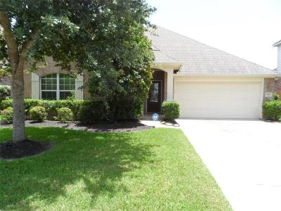 League City Single Family Home For Sale: 956 Umbria Lane