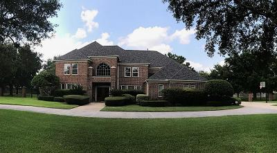 Tomball Single Family Home For Sale: 12602 Everhart Pointe Drive