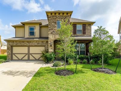 Tomball Single Family Home For Sale: 22314 Larch Grove Court