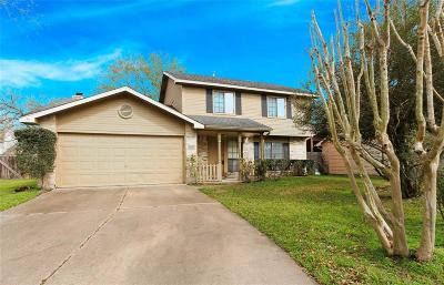 Katy Single Family Home For Sale: 20434 Blue Juniper Drive
