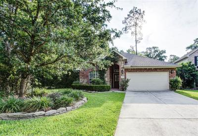 The Woodlands Single Family Home For Sale: 182 E Spindle Tree Circle