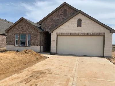 Hockley Single Family Home For Sale: 16338 Rockdale Landing Drive