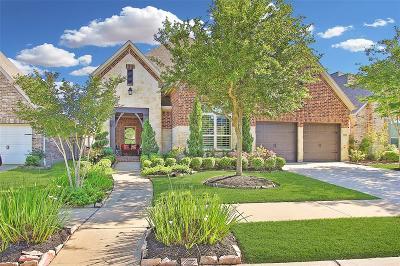 Missouri City Single Family Home For Sale: 7002 Ladera Lane