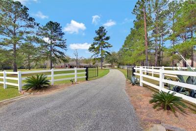 Magnolia Single Family Home For Sale: 22511 Glenmont Estates Boulevard