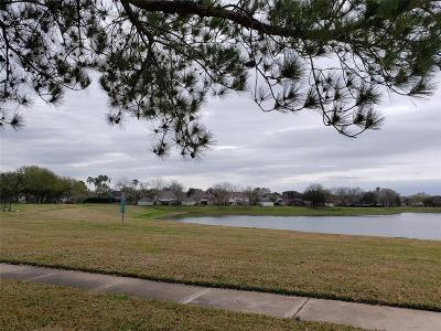 Sugar Land Single Family Home For Sale: 4523 Devonshire Street