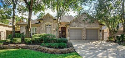 Single Family Home For Sale: 19 E Palmer Bend