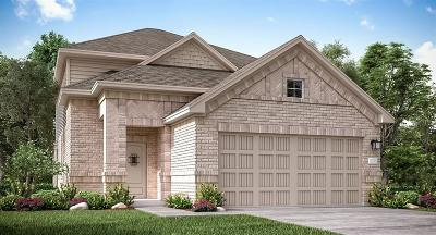 Katy Single Family Home For Sale: 25606 Royal Catchfly Road