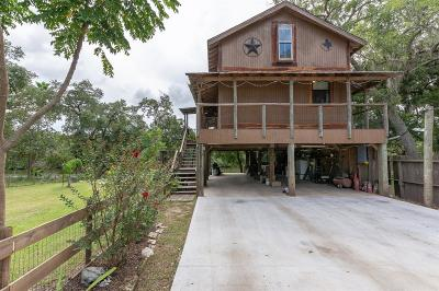 Brazoria Single Family Home For Sale: 1321 County Road 244a