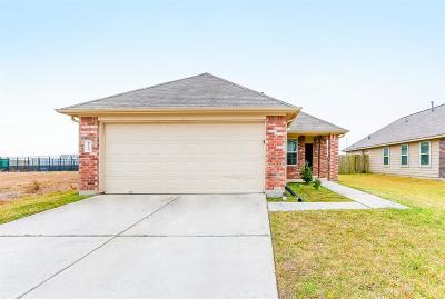 Houston Single Family Home For Sale: 6114 El Oro Drive