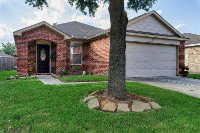 Houston Single Family Home For Sale: 631 Ashlen Drive