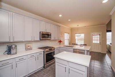 Sugar Land Single Family Home For Sale: 3243 Brook Arbor Lane