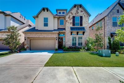 Houston Single Family Home For Sale: 2105 Westbourne Park Drive