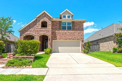Bridgeland Single Family Home For Sale: 19314 Tapalcomes Drive