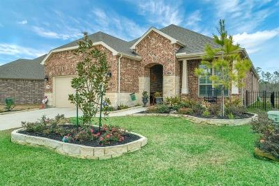 The Woodlands Single Family Home For Sale: 368 Connemara Drive