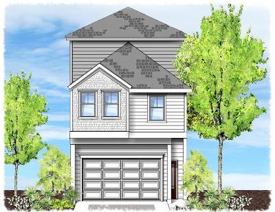 Houston Single Family Home For Sale: 105 Reinerman Street #B