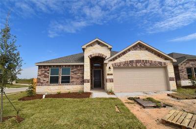 Alvin Single Family Home For Sale: 5156 Echo Falls Drive