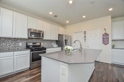 Katy Single Family Home For Sale: 22603 Auburn Valley Lane